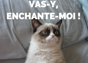 Grumpy cat Enchantement