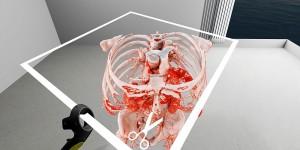 coupe anatomique en réalité virtuelle
