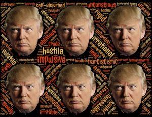 Politique aux Etats-Unis: l'effet Trump