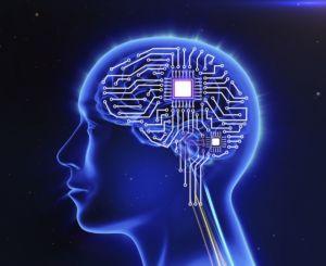 Société Neuralink et cerveau biologique augmenté