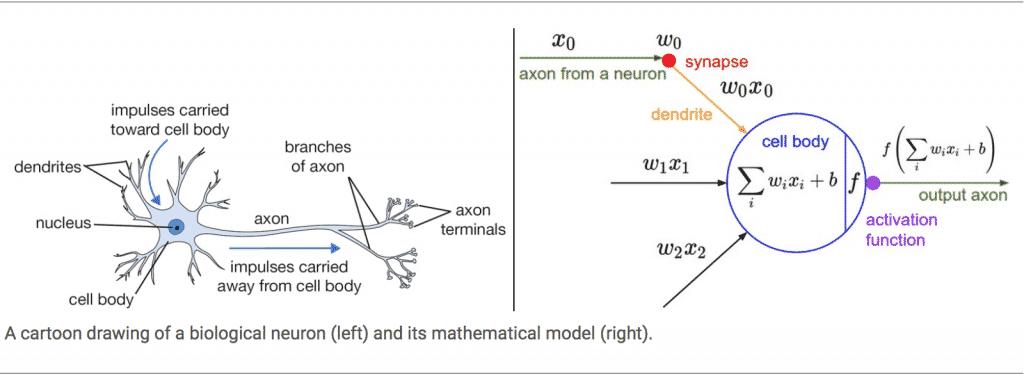 neurone artificiel - machine learning