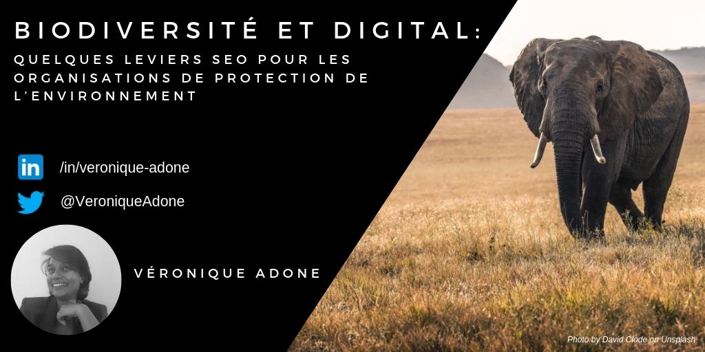 biodiversite, wwf, digital, seo, environnement, éléphant