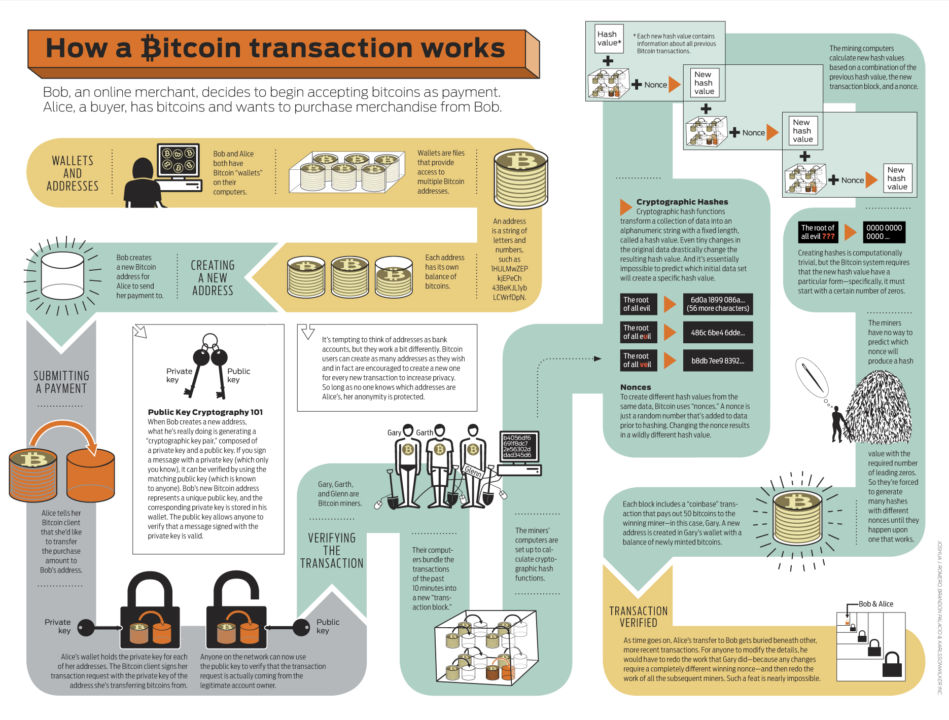 Cryptocurrencies - Bitcoin Infographics
