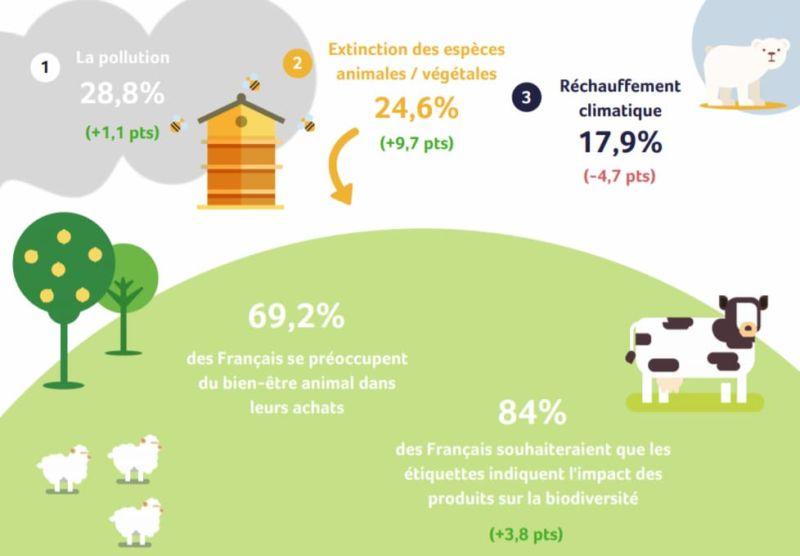 Représentation des inquiétudes des Français au sujet de l'environnement