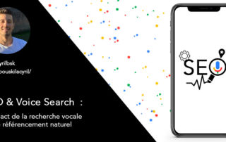 SEO-Voice-Search-Cyril-Bouskila