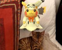 AR Pokemon Go