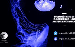 Biomimétisme et e-commerce : une alliance possible?
