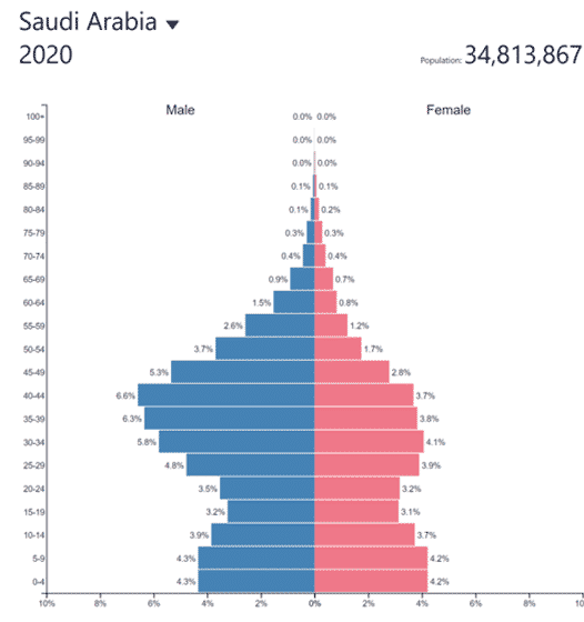 Saudi Arabia_2020 population pyramid